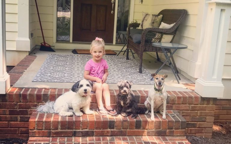 Best Family Dogs – Managing Dogs and Kids
