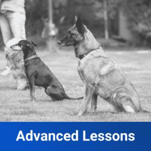 advanced lessons