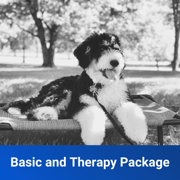 basic and therapy package